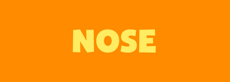 Word of the Day: Nose